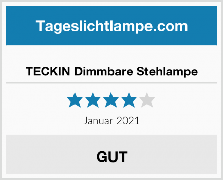 TECKIN Dimmbare Stehlampe Test